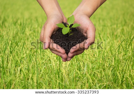 human hands palms up gesture holding little growing plant over blur  green field background:farmer hands are raising plant for help and heal the world:helping world concept:safe/save earth conception. - stock photo