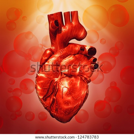 Human Heart. Abstract medical backgrounds for your design - stock photo