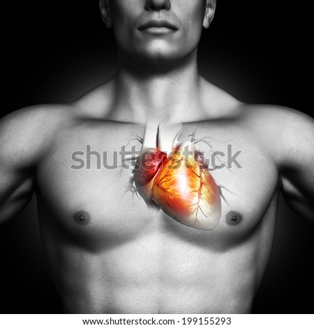 Human heart anatomy illustration of a black and white male on a black background. Part of a medical series  - stock photo