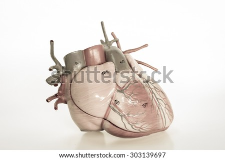 human heart model with old color style - stock photo
