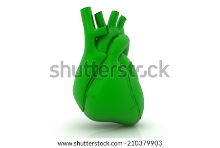 Human heart on white background - stock photo