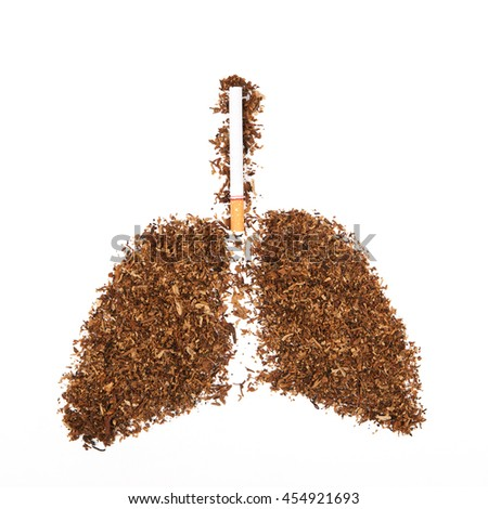 Human lung made from tobacco isolated with cigarette on white background. - stock photo