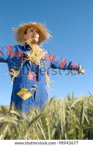 human scarecrow in a grain field - stock photo