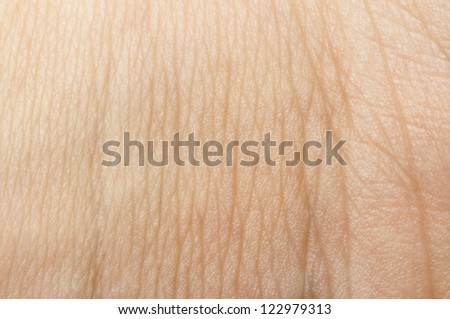 Human skin close up. Structure of Skin - stock photo