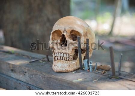 Human skull in construction site,Concept skull safety helmet,Safety in construction site - stock photo
