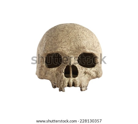 Human skull isolated on white background. Clipping path is included - stock photo