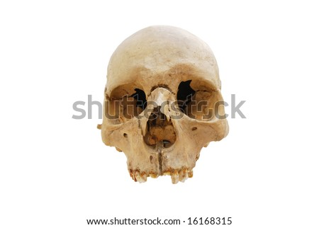 Human skull isolated over white background - clipping path included - stock photo