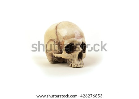 Human skull on a white background without the lower jaw - stock photo