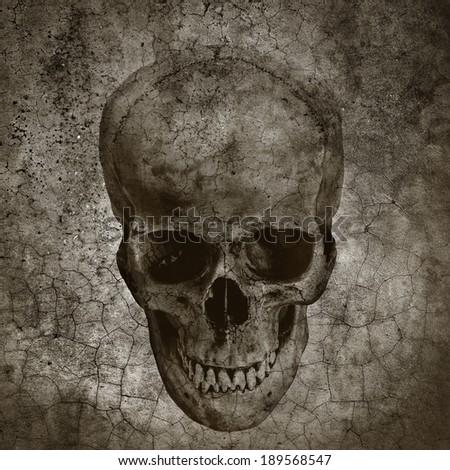 Human skull on grunge cracked background - stock photo