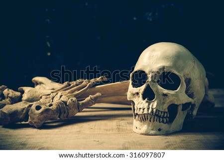 Human skull on old wood background ; still-life - stock photo