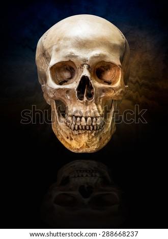 Human skull on the dark ripple smoke background - stock photo