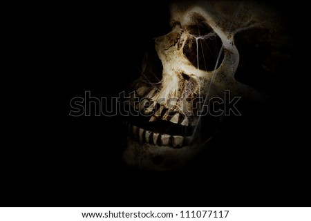 Human skull with spider webs against a black background. Room for copy space. - stock photo