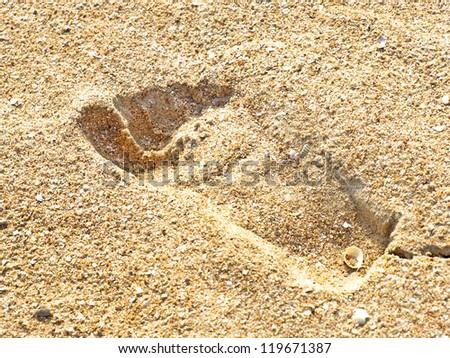Human trace on the yellow sand on a beach taken closeup. - stock photo