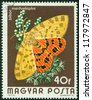 HUNGARY - CIRCA 1974: A stamp printed in Hungary a shows image of a Checked butterfly, circa 1974 - stock photo