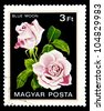 """HUNGARY - CIRCA 1982: A stamp printed in Hungary shows a rose with the inscription """"Blue Moon"""", from the series """"Flowers"""", circa 1982 - stock photo"""