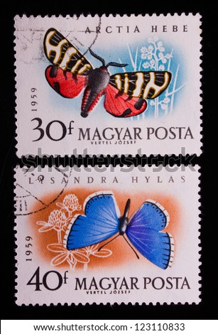 HUNGARY - CIRCA 1959: A stamp printed in Hungary shows two different kinds of butterflies,circa 1959 - stock photo