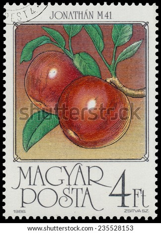 HUNGARY - CIRCA 1986: stamp printed by Hungary, shows Apples, series is devoted to fruits, circa 1986 - stock photo