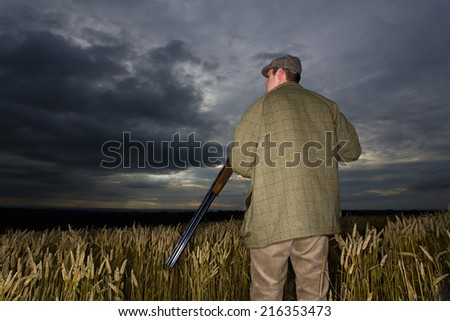 Hunter with rifle standing in wheat field - stock photo