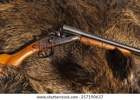 hunting gun on the skin of wild boar - stock photo