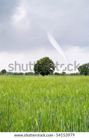 hurricane incoming on green field - stock photo