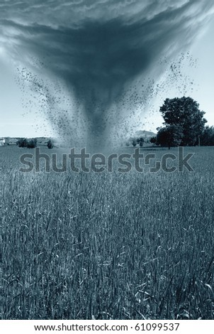 hurricane is incoming on a cornfield - stock photo