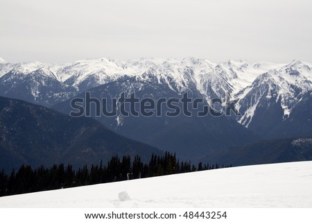 Hurricane Ridge in early spring in Olympic National Park - stock photo
