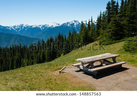 Hurricane Ridge in Olympic National Park - stock photo