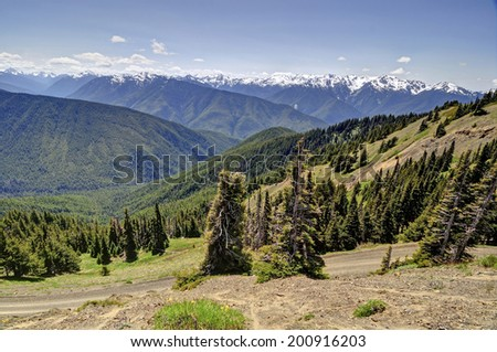 Hurricane Ridge, Olympic National Park - stock photo