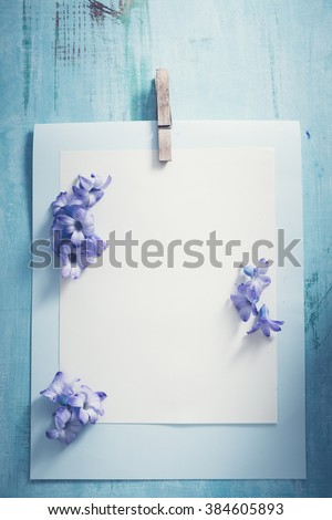 Hyacinth blossom - stock photo