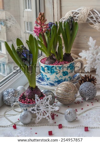 Hyacinths in  vintage pots and Christmas decorations in the window on Christmas Eve. - stock photo
