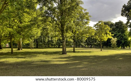 Hyde Park trees HDR - stock photo