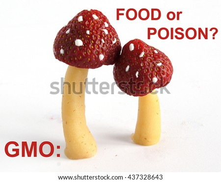 Hypothetical genetically modified food with strawberry and toadstools genes Conceptual - stock photo