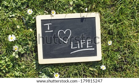 I love life written on a chalkboard in a park - stock photo