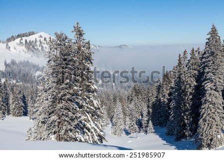 IBERGEREGG, SCHWYZ, SWITZERLAND - FEBRUARY 7: Viem from the hilltop of Mountain Ibergeregg on February 7, 2015. Ibergeregg is a high mountain pass and ski resort in the swiss alps. - stock photo