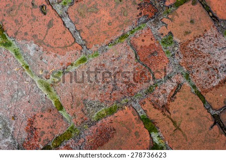 ice and moss cover the Colonial era and revolutionary walkway made of old foundry bricks in Old New Castle - stock photo