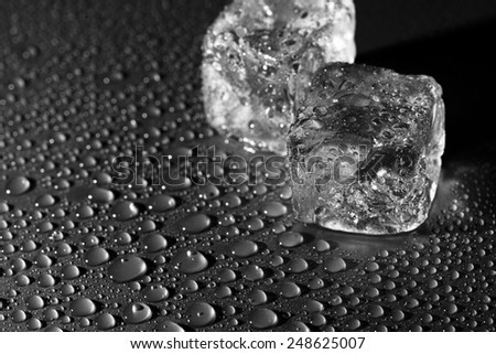 ice cubes water drops, black and white photo - stock photo