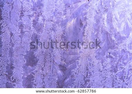 Ice flowers. - stock photo