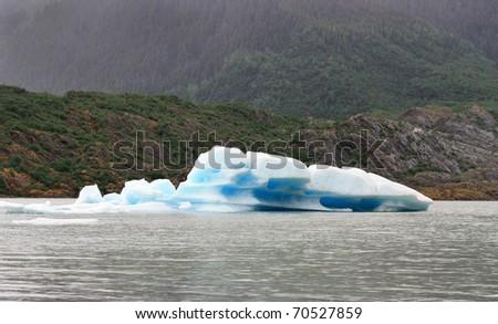 Iceberg in Mendenhall Glacier in Juneau Alaska - stock photo