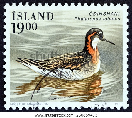 """ICELAND - CIRCA 1989: A stamp printed in Iceland from the """"Birds """" issue shows Red-necked phalarope (Phalaropus lobatus), circa 1989.  - stock photo"""