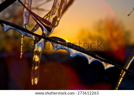 Icicle on a background of sunset. Spring. Red sunset. The awakening of nature - stock photo
