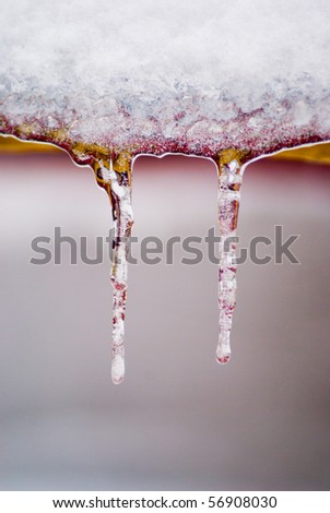 icicles on trees - stock photo