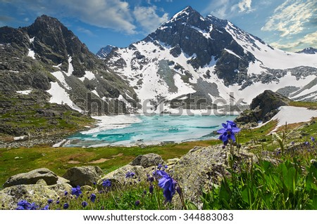Icy lake with colorful flowers and the mountain peaks in the background, Russia, Siberia, Altai mountains, Katun ridge. - stock photo