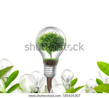 Idea ,light bulb Alternative energy concept  - stock photo