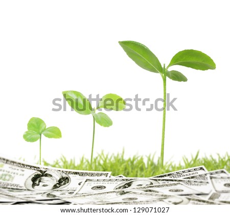Ideas growth plant in a grass - stock photo