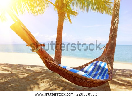 Idyllic beach with coconut trees and hammock - stock photo