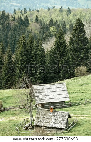 Idyllic dairy farms on alpine meadow with coniferous and deciduous forest in desolate area of national park. Sustainable industry, ecosystem and healthy, tranquil environment, eco tourism concepts.  - stock photo