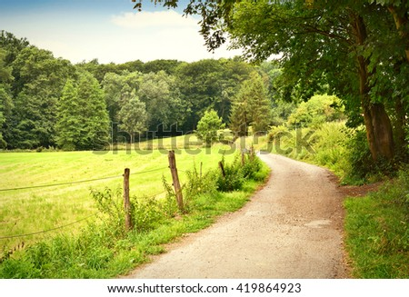 Idyllic footpath through fields and forest, nature background. Country road or street through an idyllic landscape in summer. Forest, fields and blue sky with copy space.  - stock photo