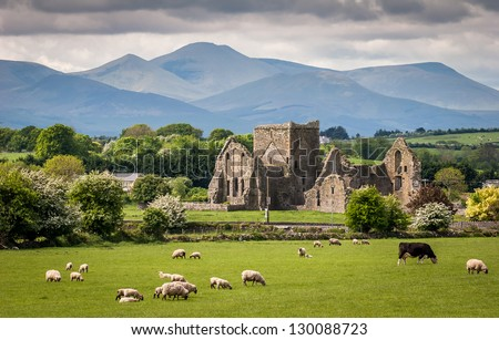 Idyllic Irish Landscape - stock photo