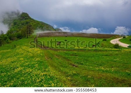 Idyllic landscape, Armenia - stock photo