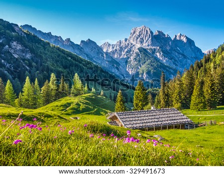 Idyllic mountain scenery in the Alps in springtime with traditional mountain chalet and fresh green mountain pastures with blooming flowers in beautiful evening light at sunset - stock photo